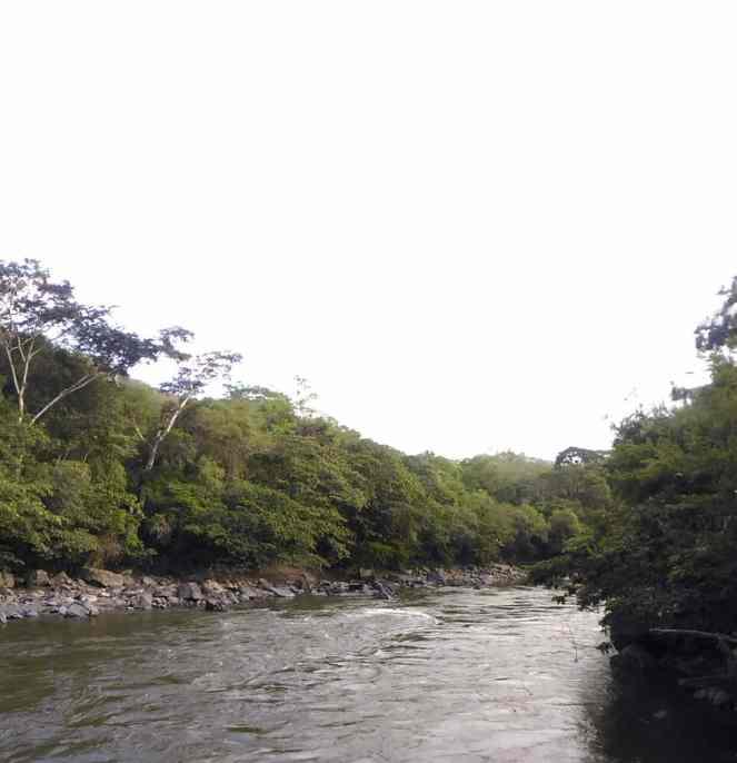 Rio Fonce
